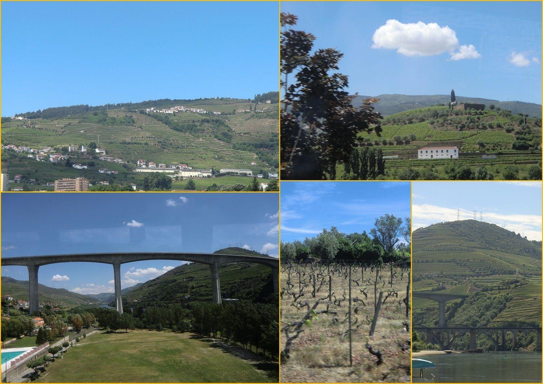 http://coquelikoaumarineland2009.c.o.pic.centerblog.net/o/b93db74e.jpg